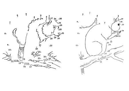 рисование по точкам животные
